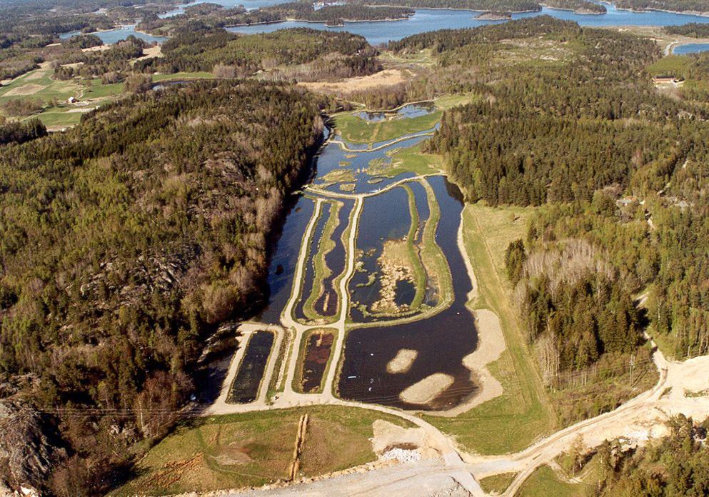 Rening av läkemedelsrester i spillvattenvåtmarker