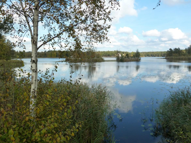 Dagvattenreningsåtgärder för sjön Trehörningen i Huddinge