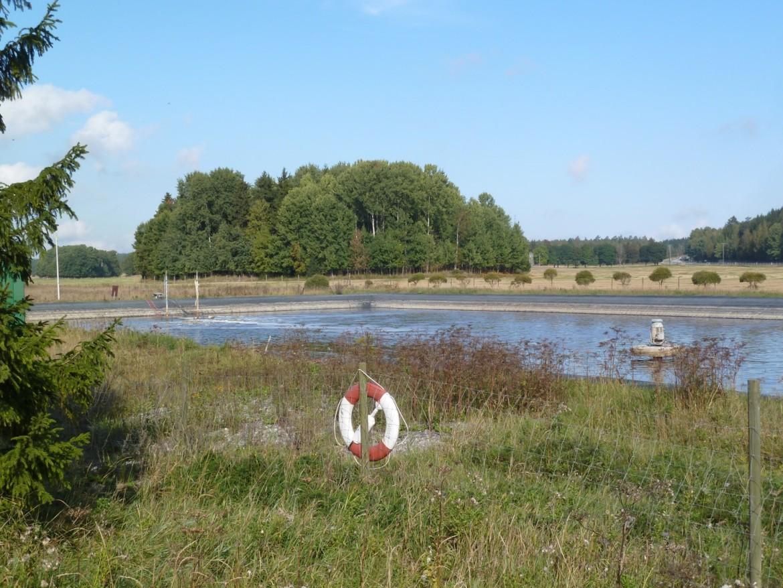 Behandlingsvåtmark för dagvatten från avfallsanläggning