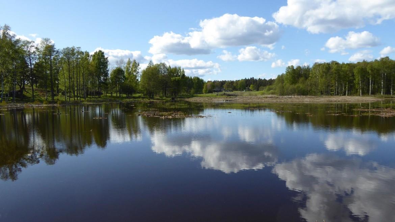 """Gäddvåtmark """"Södra fladen"""" invigdes på Utö"""