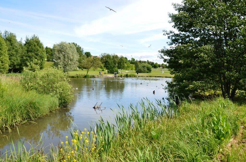 Hjulsta Vattenpark. Foto: WRS.