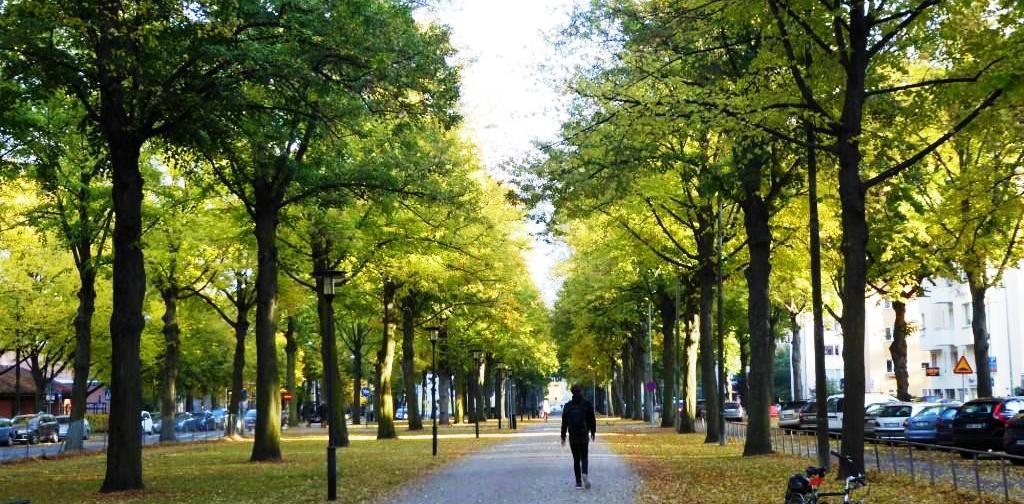 Valhallavägen_promenadstråk_huvudbild