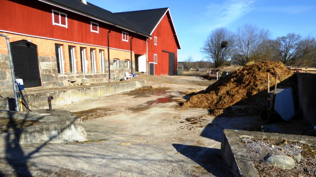 Fosforbelastning från hästgårdar