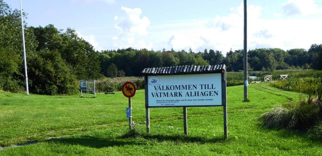Lyckad jubileumsvandring i Alhagen!