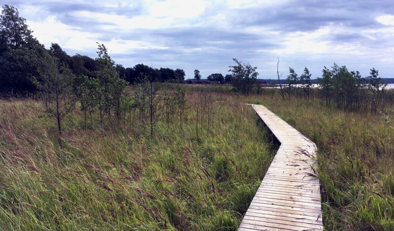 Våtmark ritad av WRS nominerad till pris på Åland!
