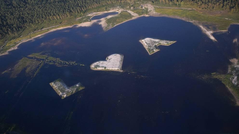 Kärleksförklaring i Gotländsk våtmark