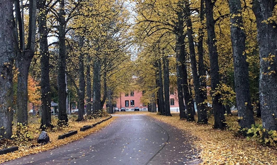 Källsorterande avlopp på Gotland