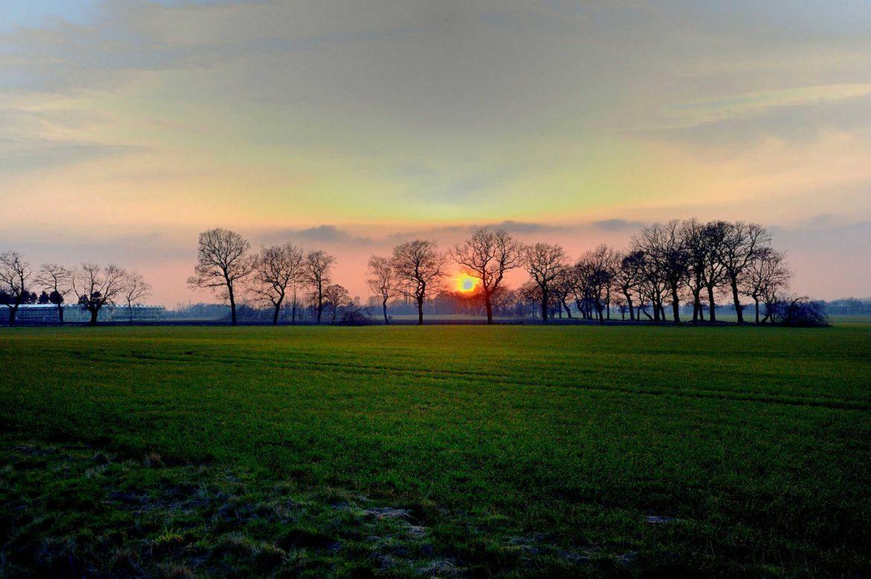 WRS deltar i planering för Sveriges största sorterande avloppssystem