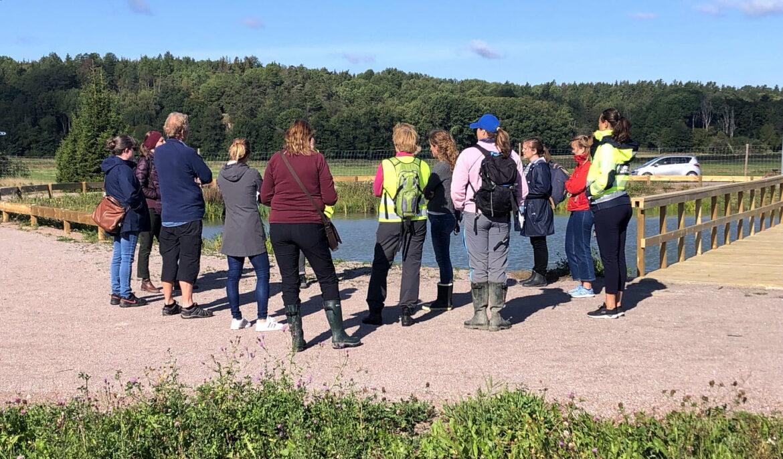 Populär guidning av Gottsunda dagvattenpark